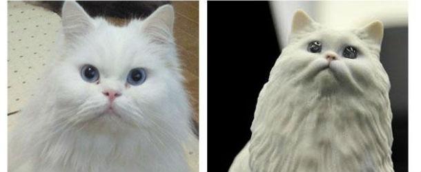 3D printed pet