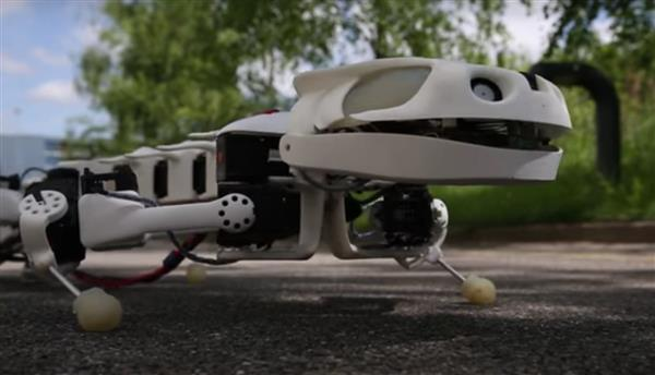 A 3D printed robot salamander that can walk, crawl and even swim underwater