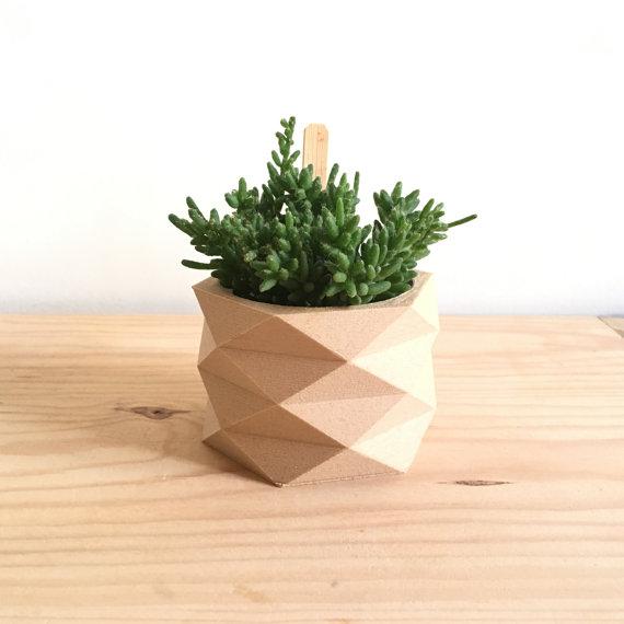 Original and Modern, a 3D Wooden Pot for Your Pot Plant!