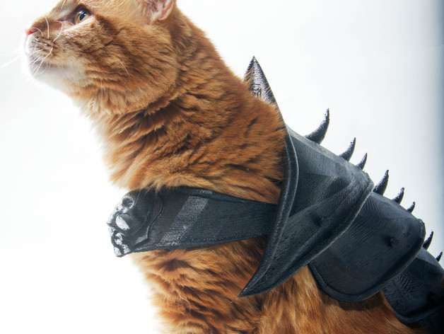 A cat with 3D printed armor