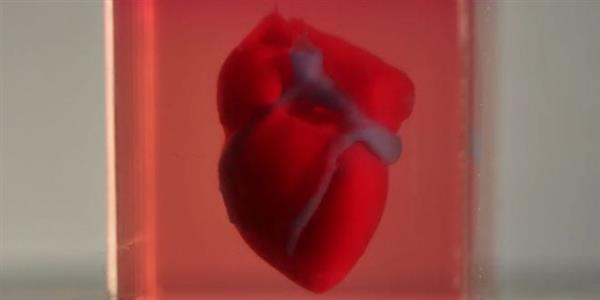 First-ever 3D printed human heart