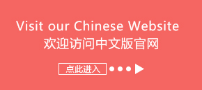 Chinese Website entry